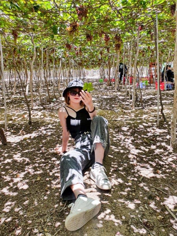 Check in vườn nho Nha Trang